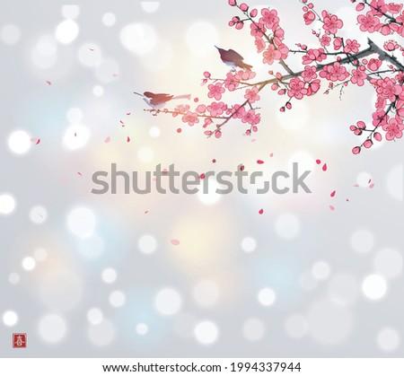 two birds on blossoming sakura