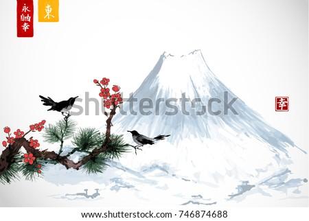 two birds on sakura and pine