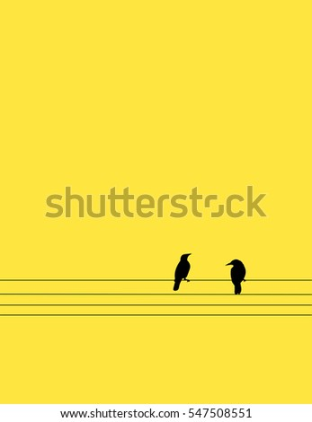 two birds perched on wires in
