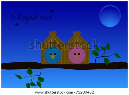 two birds sitting in houses on