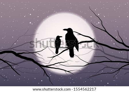 two birds sitting on the bare