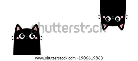 two black kitten face head cat