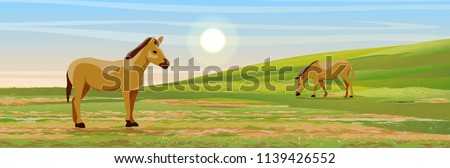 two brown horses graze in a