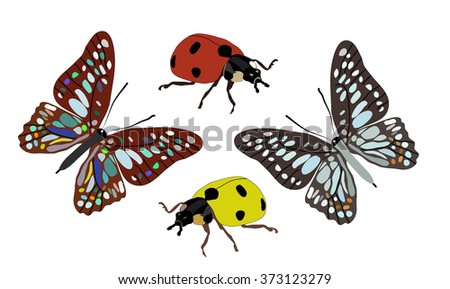 two butterflies and ladybugs