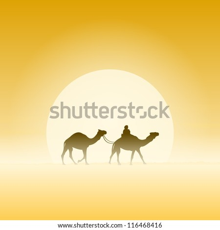 two camels and sun   travel