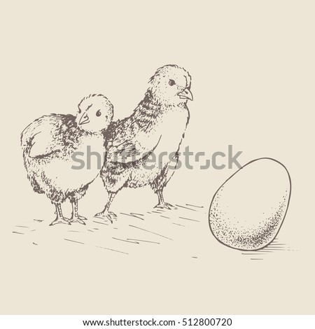 two chick peeking out of eggs