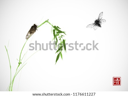 two cicadas and green bamboo