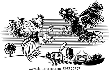 Line Art Rooster : Vector cock download free art stock graphics & images
