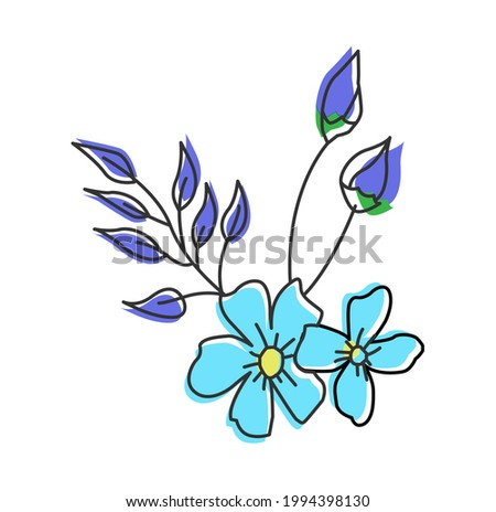 two cool blue forget me not