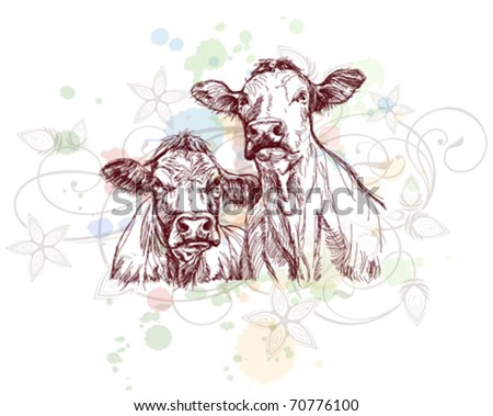 two cows hand draw sketch  & floral calligraphy ornament - a stylized orchid, color paint background
