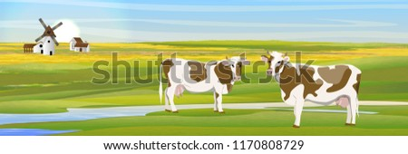 two cows in a meadow near the