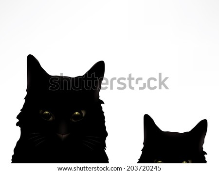two cute black cats