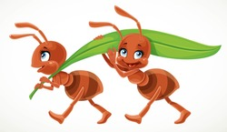 Two cute cartoon ant carry green juicy blade of grass isolated on a white background