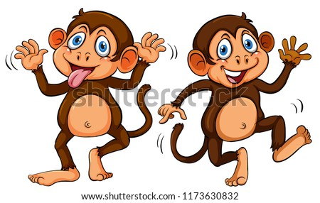 two cute cartoon monkeys