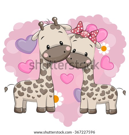 two cute giraffes on a