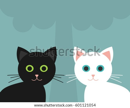 two cute kittens  black and