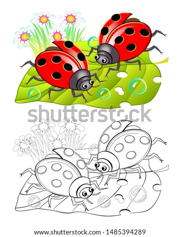 Two cute ladybirds sitting on a leaf. Colorful and black and white page for coloring book for kids. Fantasy illustration of insects. Printable worksheet for children and adults. Vector cartoon image. stock photo