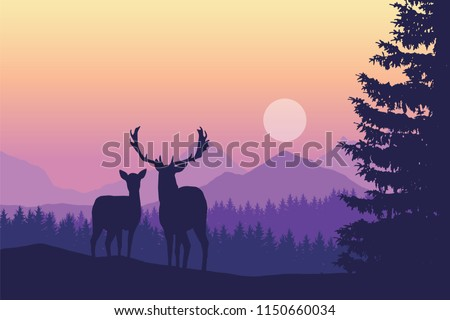two deer standing in coniferous