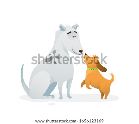 two dogs animal pets puppies