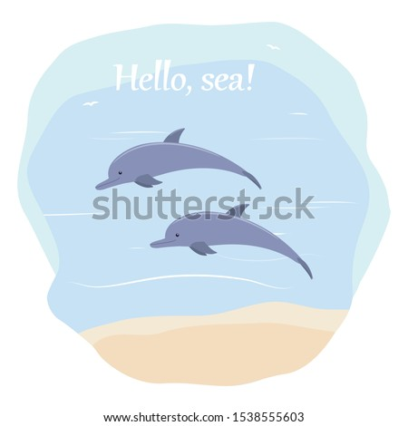 two dolphins swim in the sea