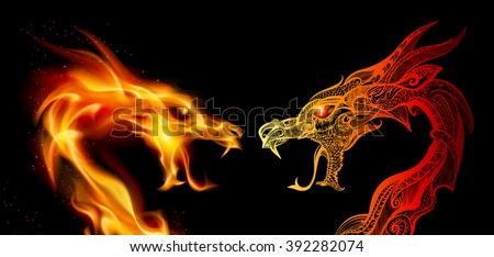 two dragon heads in fire and