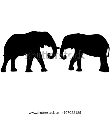 two elephants love silhouettes