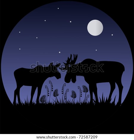 Two elks silhouettes in moonlight