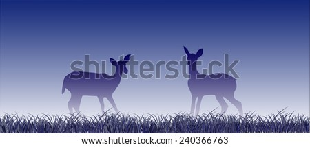 two fawns on the meadow in cold