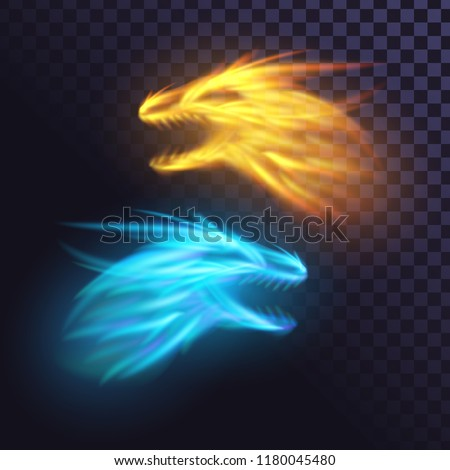 two fire dragons on a