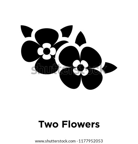 two flowers icon vector