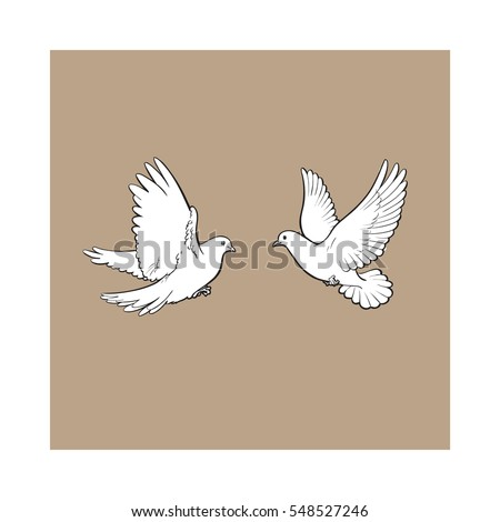 two free flying white doves
