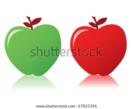 Two fresh apples with leave isolated over a white background. vector