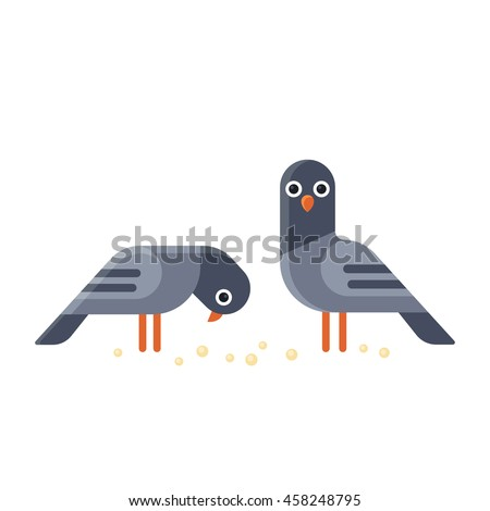 two funny cartoon pigeons