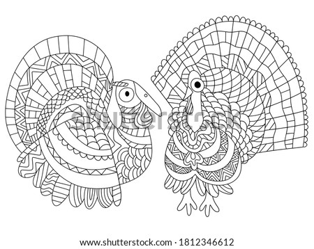 two funny turkey bird coloring