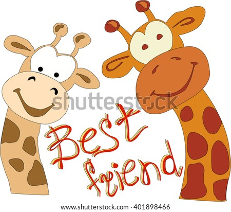 two giraffes best friends