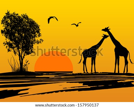 two giraffes silhouette in