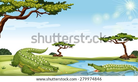 Two green crocodiles in the nature