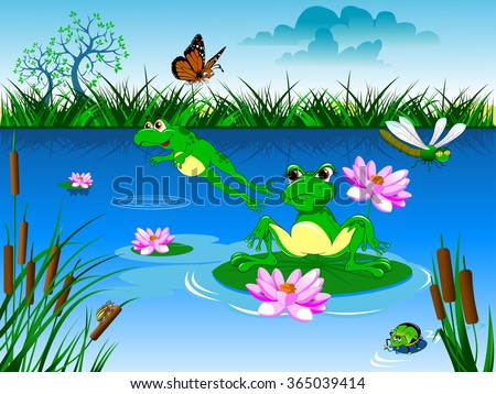 two green frog swimming in a