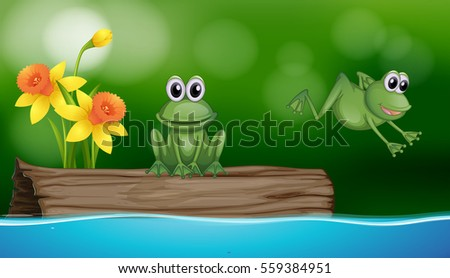 two green frogs at the pond