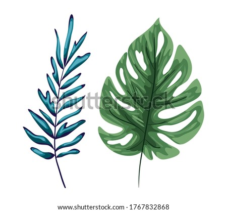 two green leaves design of