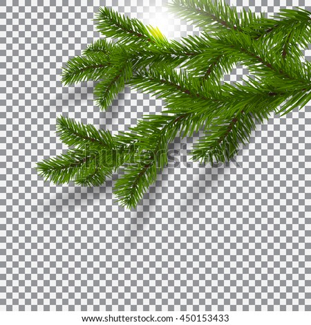 Two green, realistic shadows with spruce branches. Christmas Spruce branches. On a plaid background. The sun. Christmas vector illustration