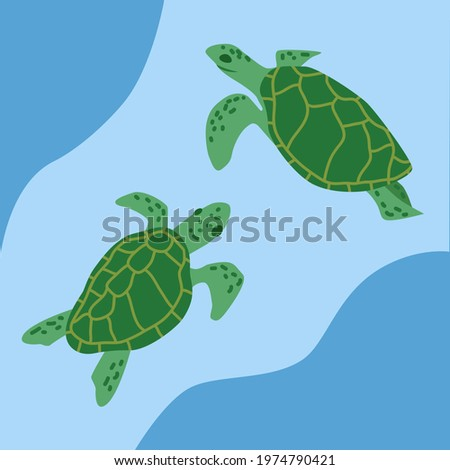 two hand drawn sea turtles on