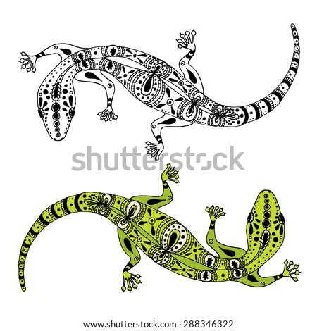 two hand drawn vector gecko