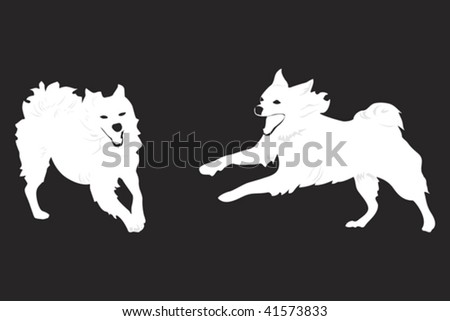 two happy dogs running