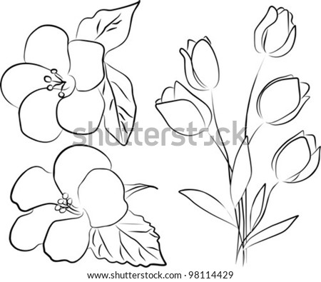 two hibiscus flower and tulip bouquet on a white background, vector illustration - stock vector