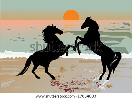 two horses near sea with sunset