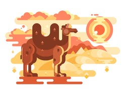 Two-humped camel in desert flat. Animal travel on nature, wild hardy mammal vector illustration