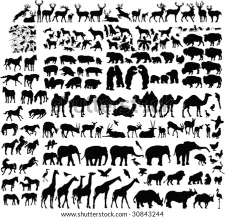two hundred animal silhouettes