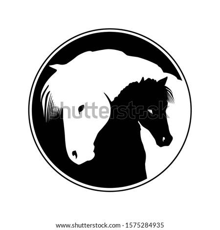 two icelandic horses vector