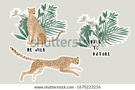 two jaguars in a thicket of